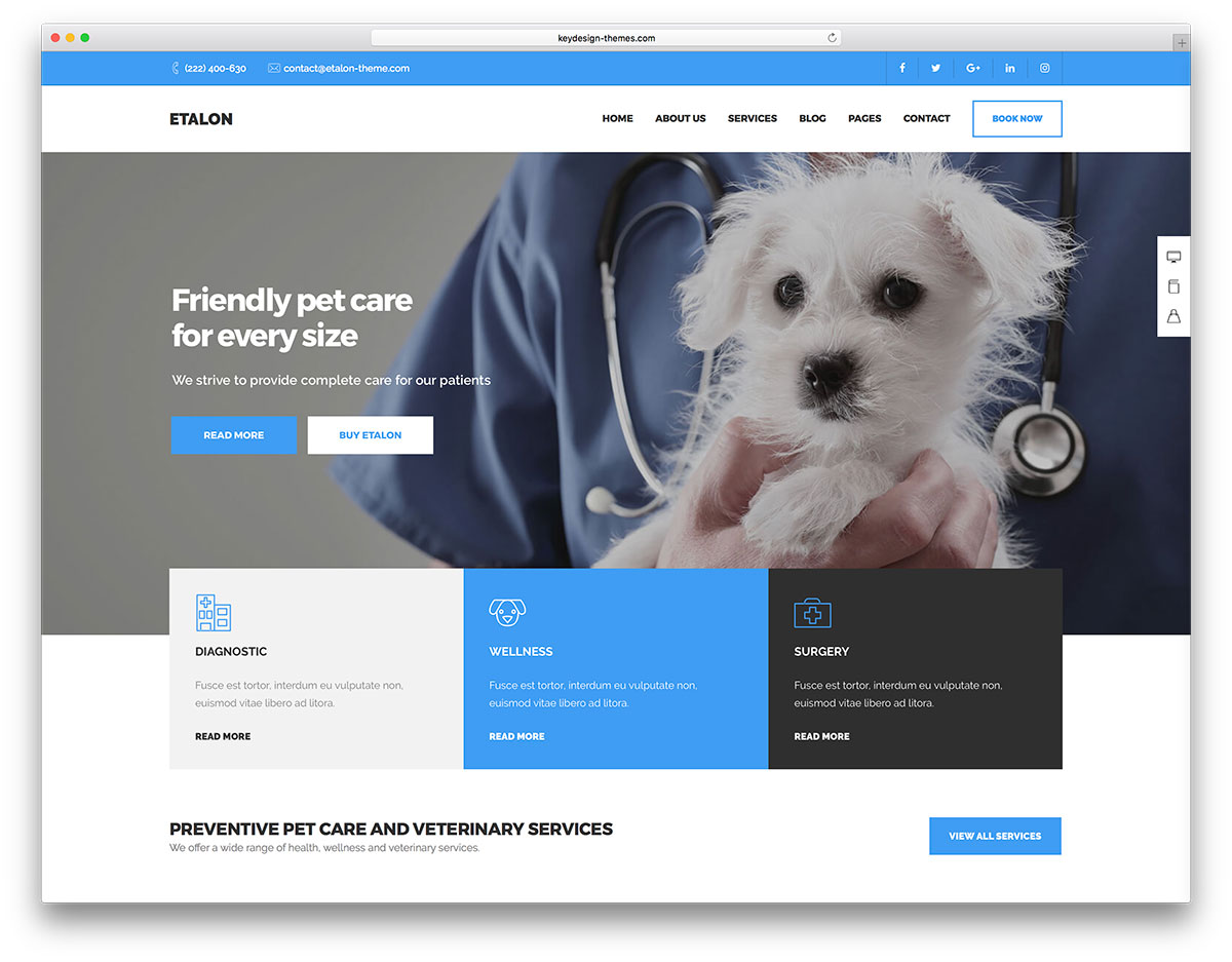 40 Finest Animal WordPress Themes Your Choice 2017 Colorlib