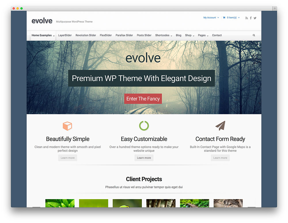 evelo corporate WordPress themes