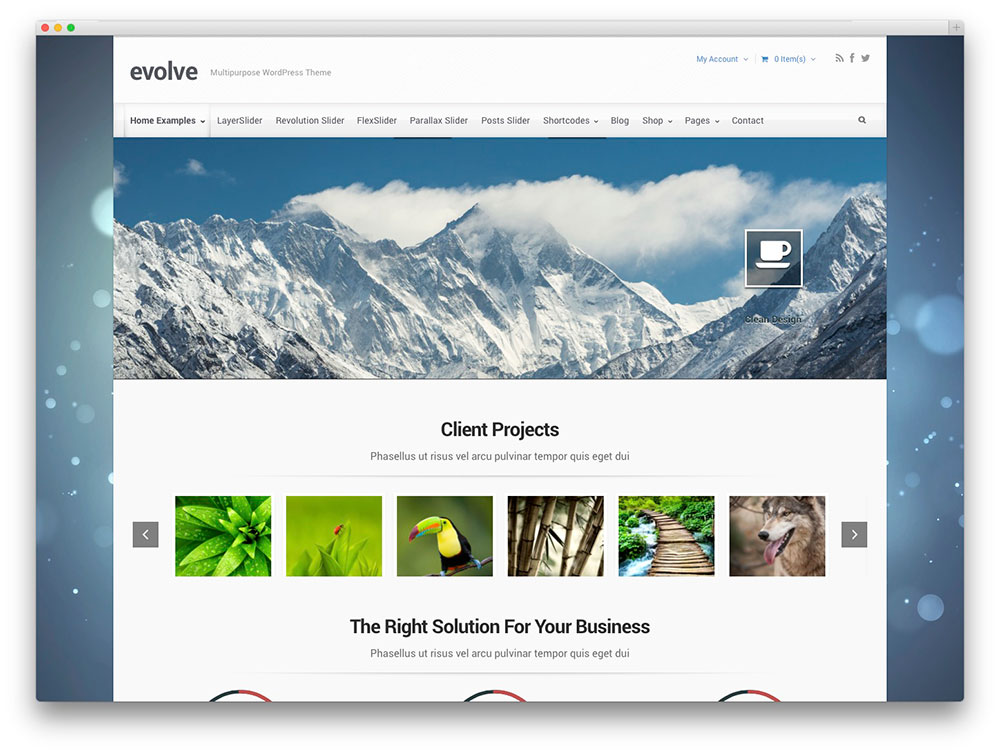 evolve - multipurpose theme