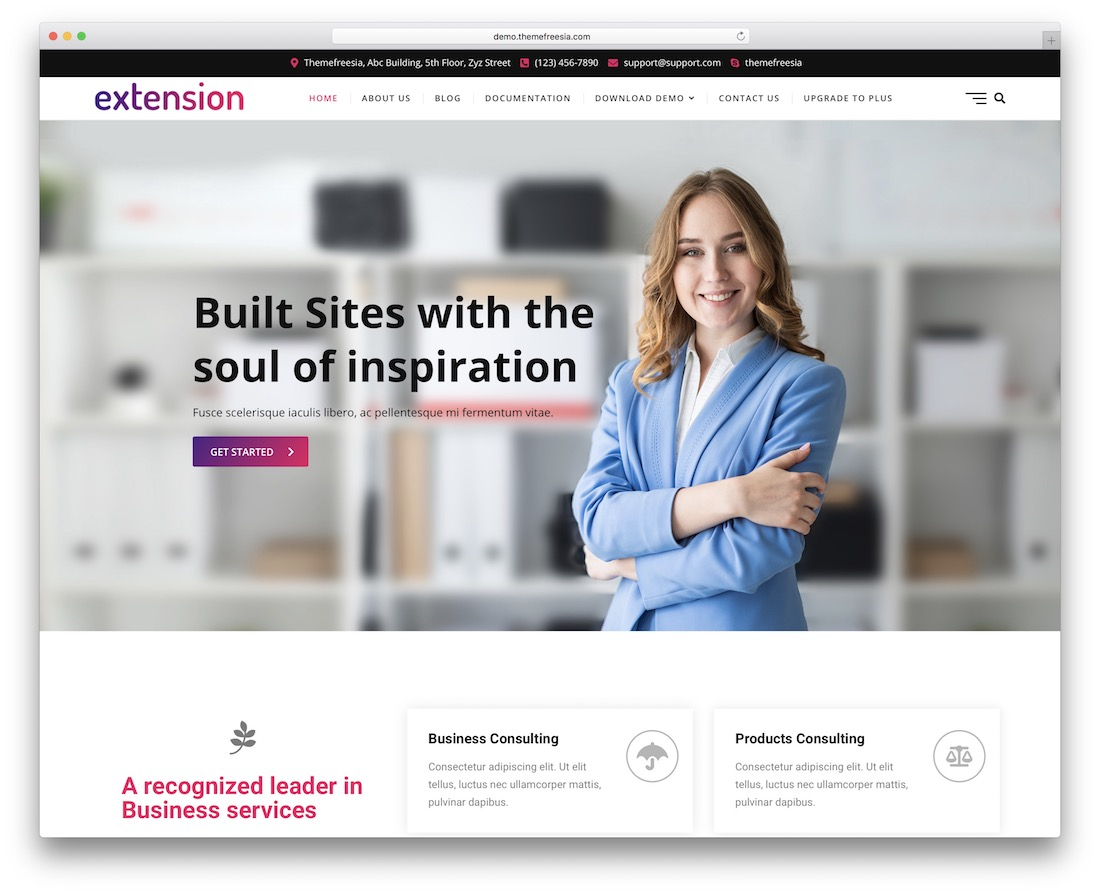 extension free wordpress theme