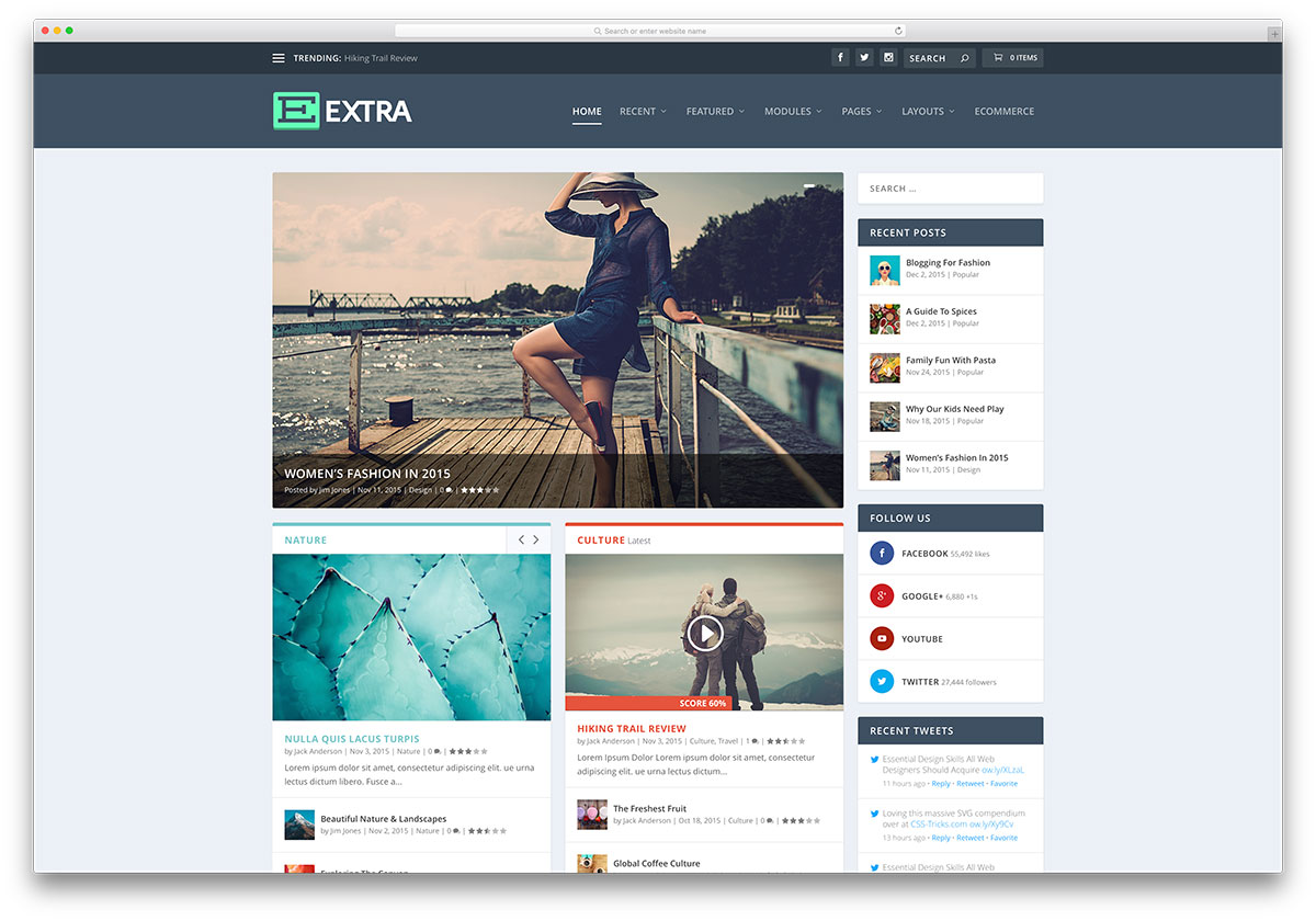 Extra WordPress Theme Review:  Build The Website You Want With Ease