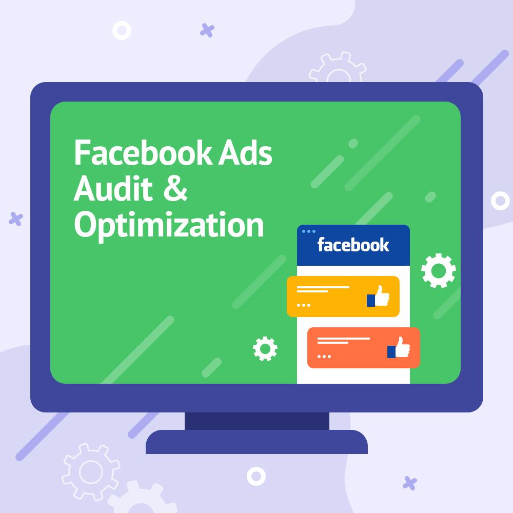Facebook Ads Audit & Optimization