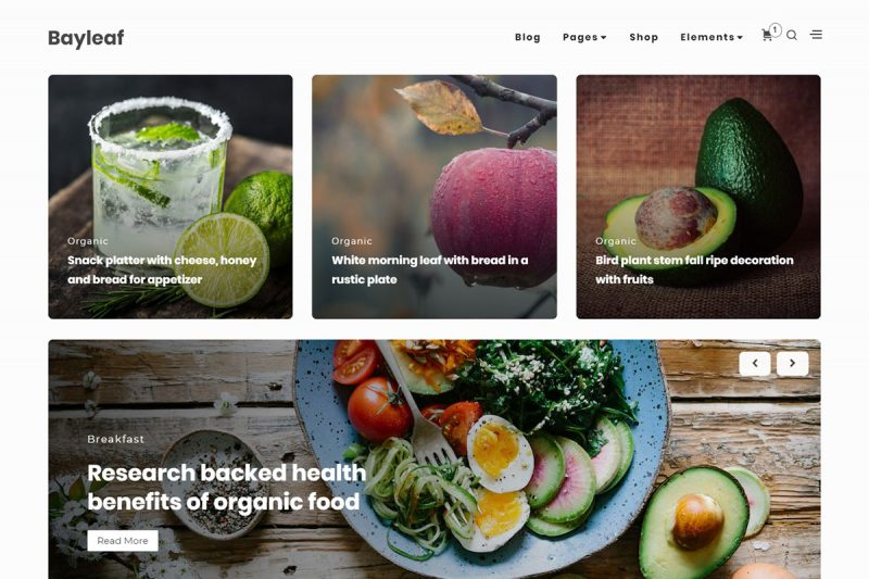 19 Fastest Free WordPress Themes For Blog, ECommerce, Personal And Business Websites 2020