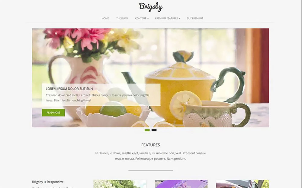 Brigsby - Responsive WordPress Theme