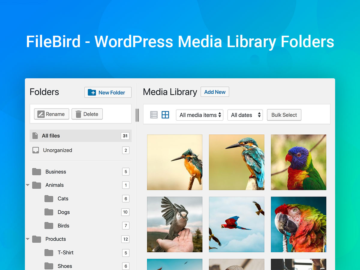 The Best WordPress Media Library Management Plugins 2019