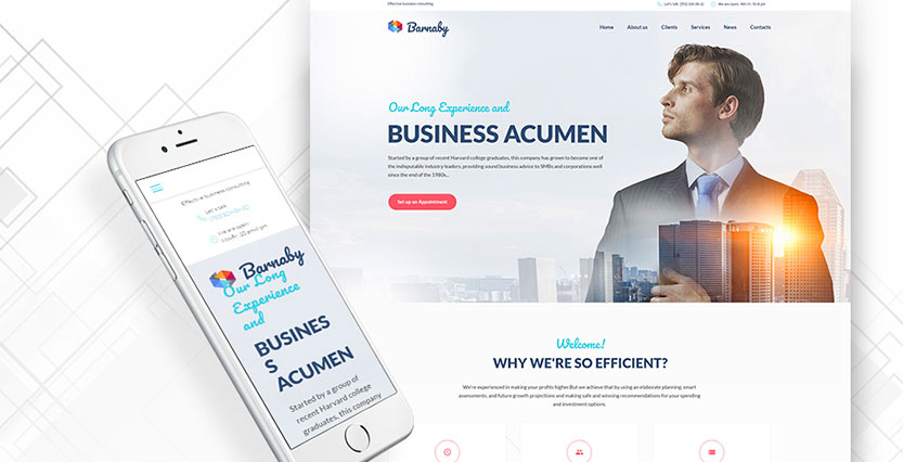 Barnaby - Consulting WordPress Theme