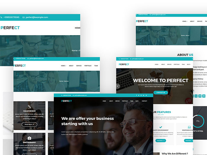 Perfect - Business & Corporate WordPress Theme
