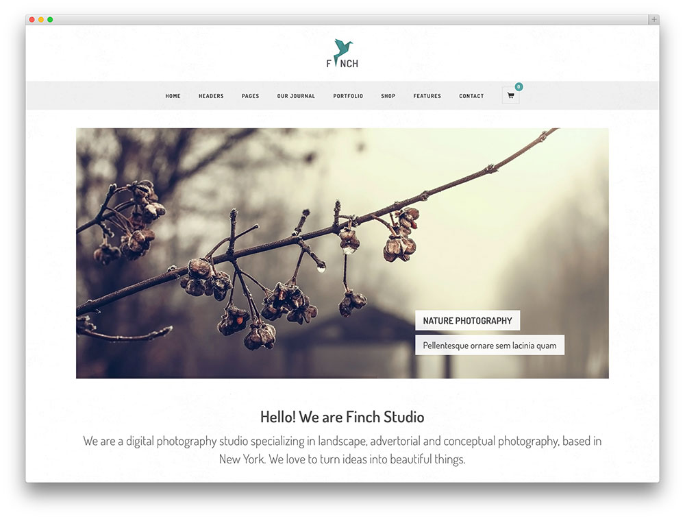 finch - minimal photography theme