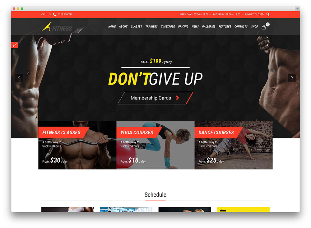 fitness club WordPress theme