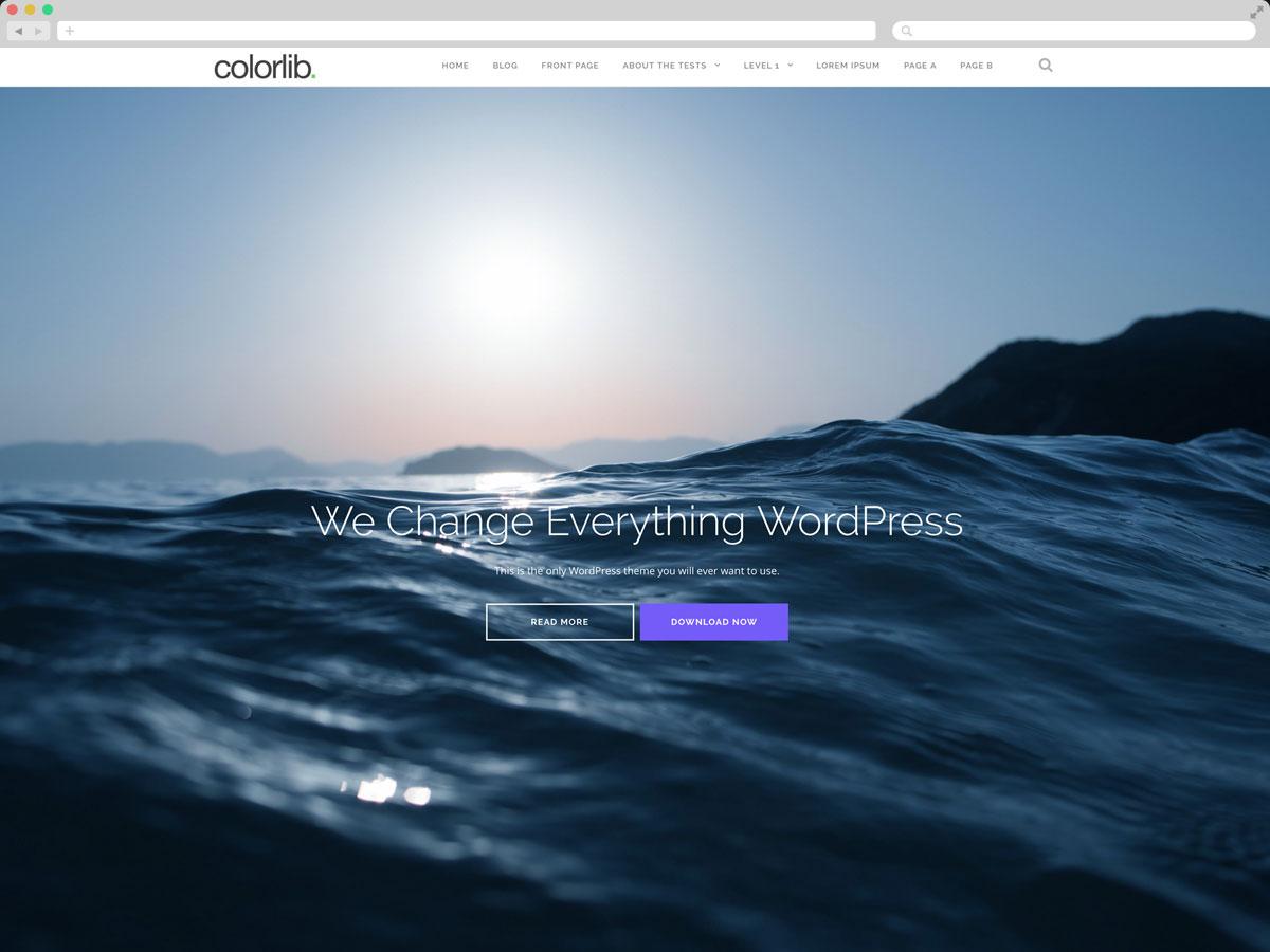 Shapely - Free One Page WordPress Theme