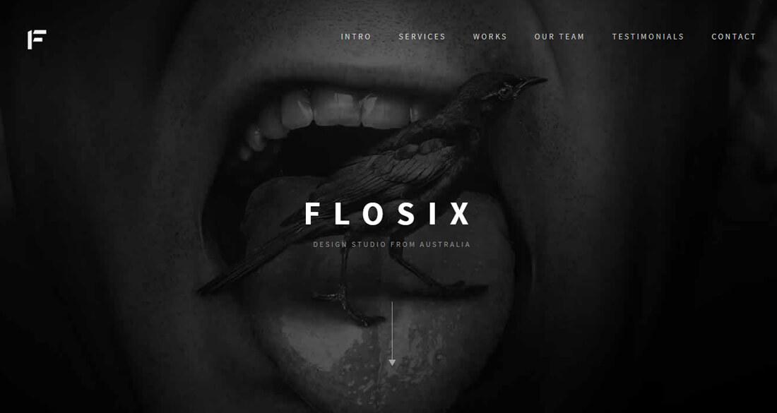 flosix
