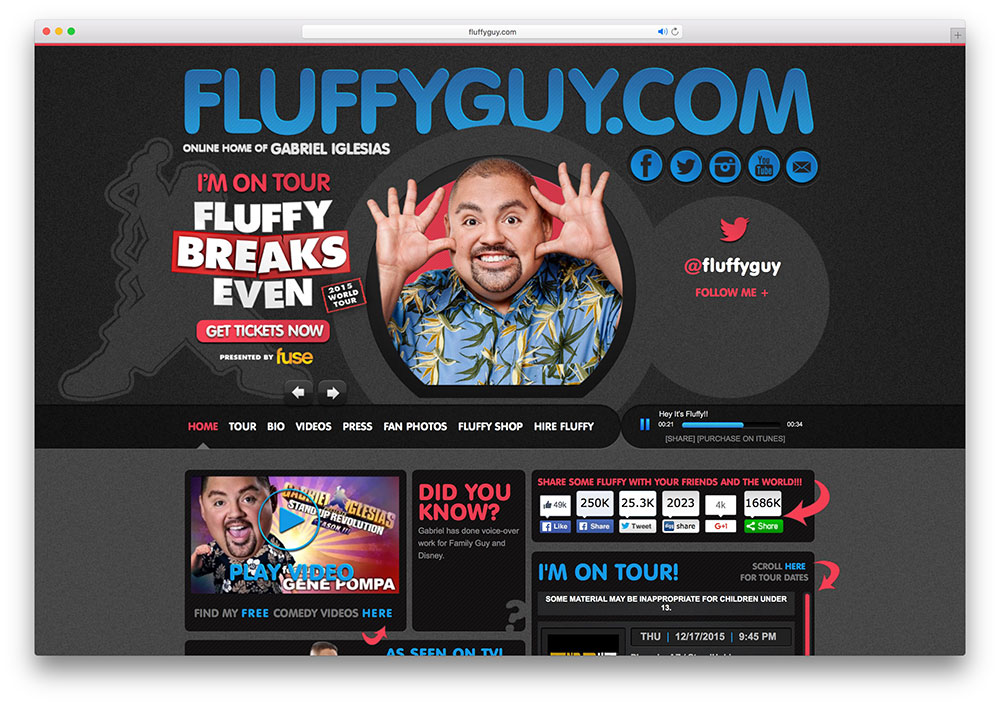 fluffyguy-online-celebrity-site-with-wordpress