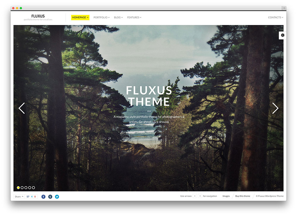 fluxus beautiful photography theme
