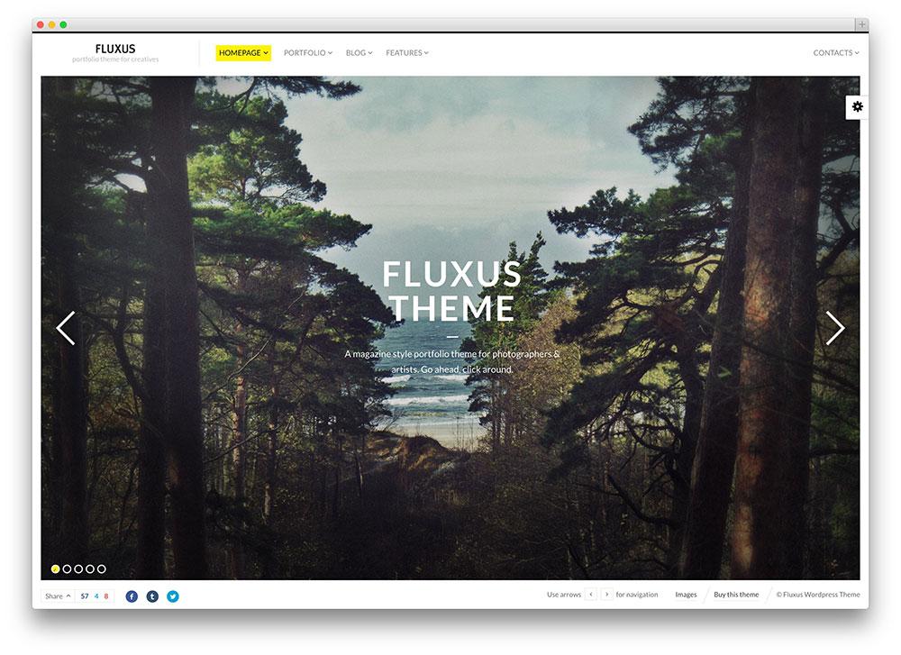 fluxus beautiful photography theme
