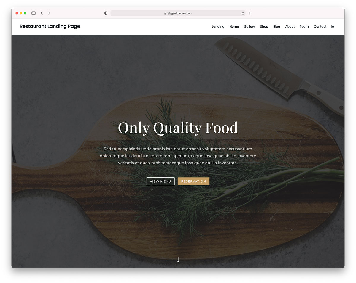 food delivery theme - divi