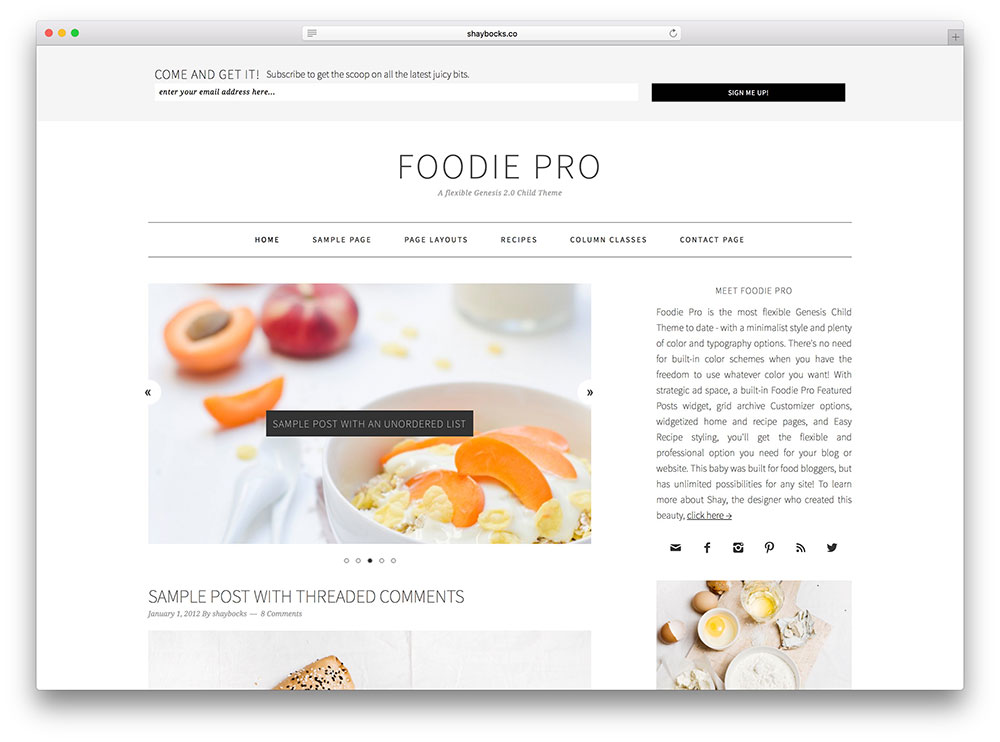foodie - genesis food blog theme