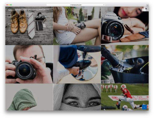 Free Gallery Wordpress Themes