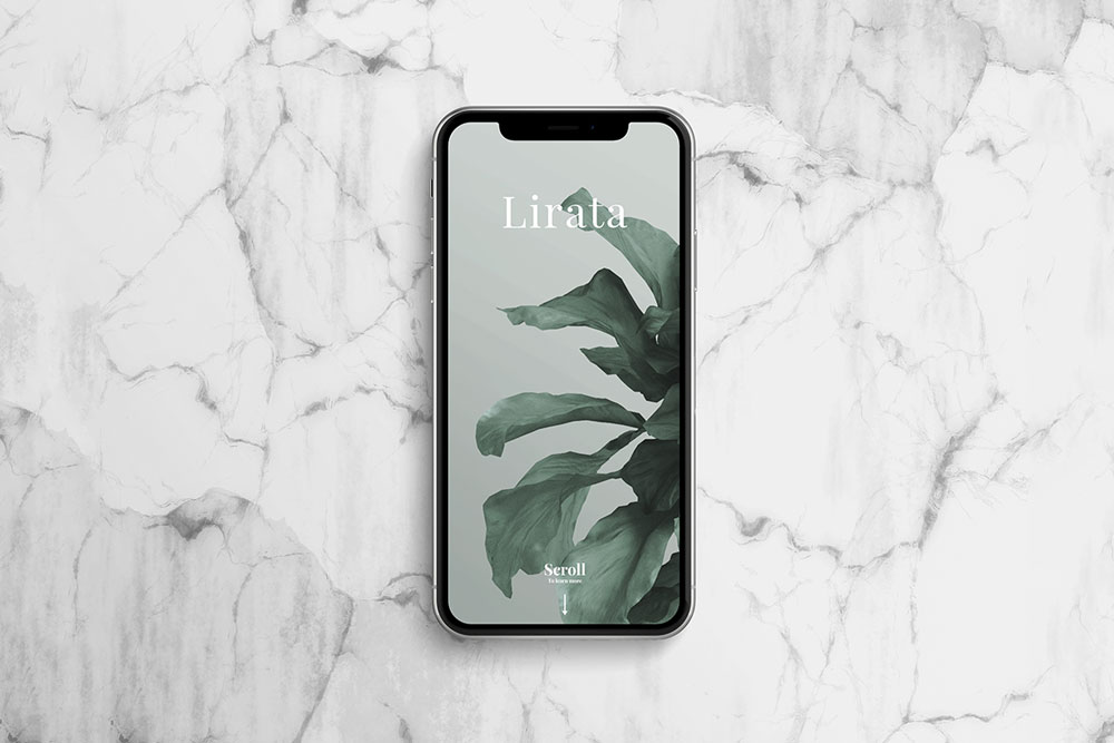 free iphone x mockup stone background