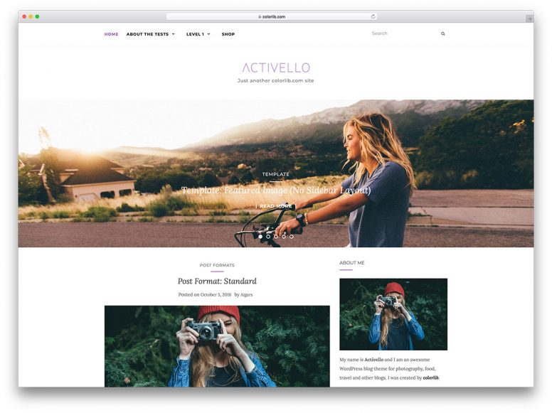 25 Amazing & Free Minimalist WordPress Themes 2018