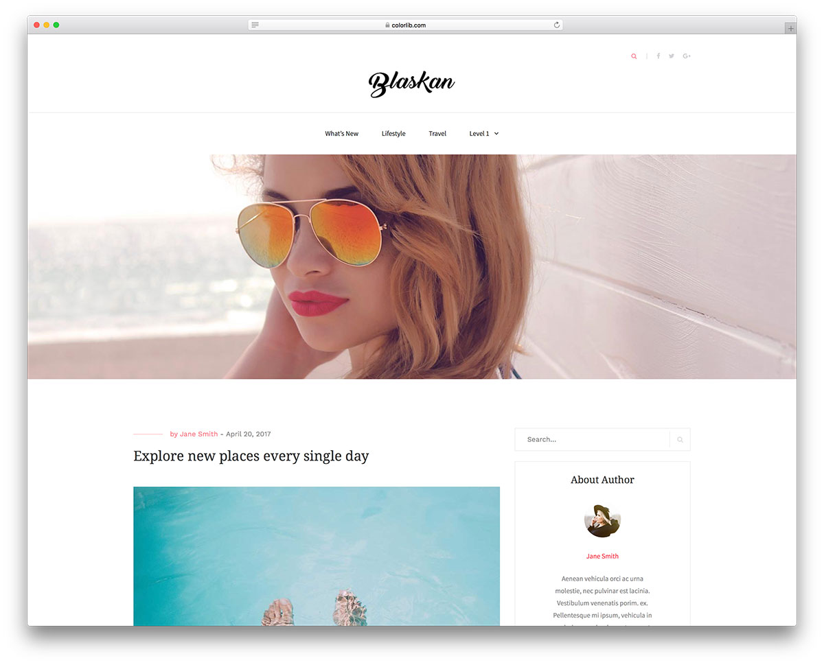 Free Clean WordPress Themes