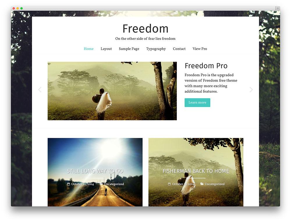 freedom stunning free theme