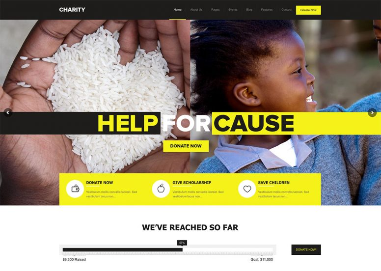 33 Most Popular Fundraising WordPress Themes 2017