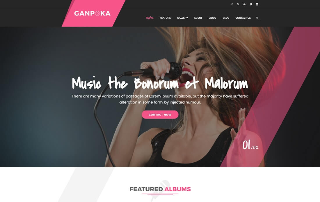 ganpoka musician website template