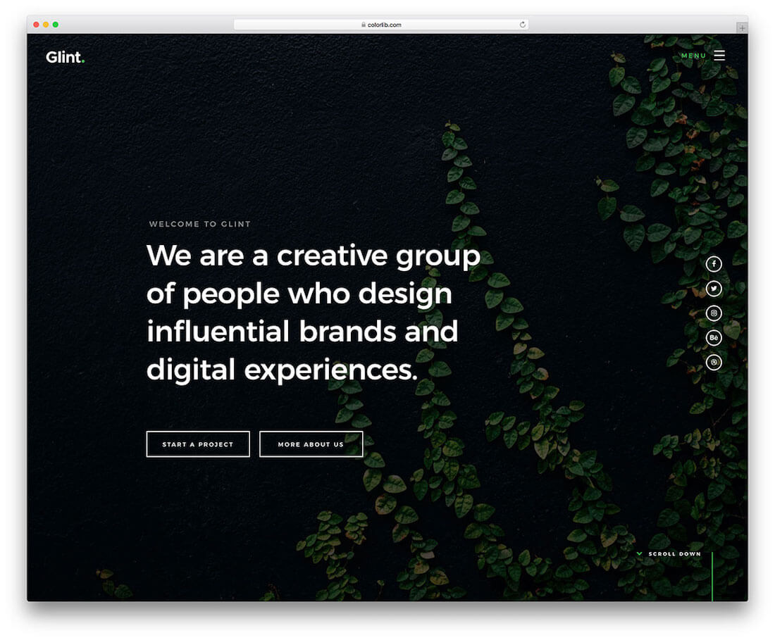 glint free photography website template