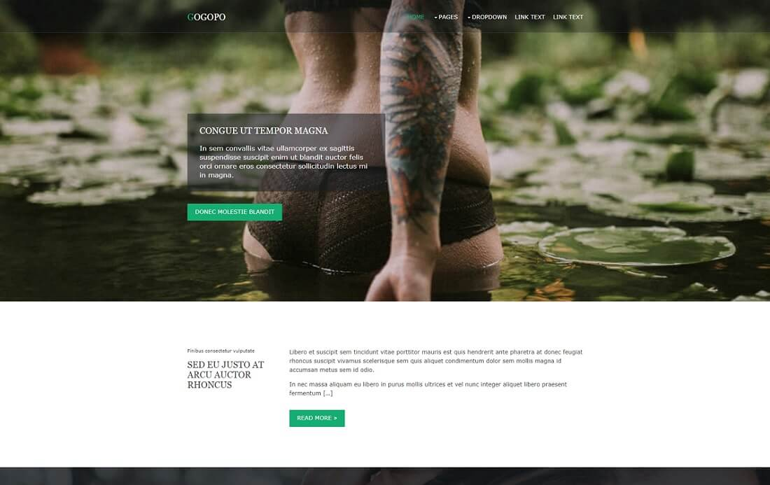 gogopo free simple html template