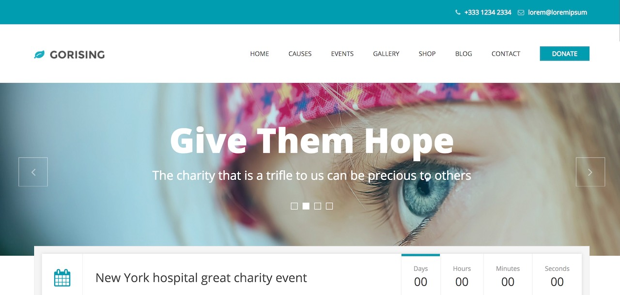 gorising-charity-nonprofit-fundrising-wp-theme-CL