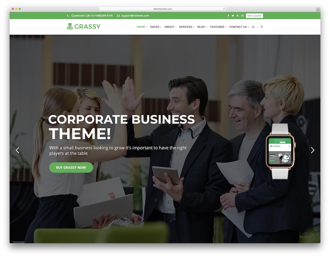 grassy cheap wordpress theme