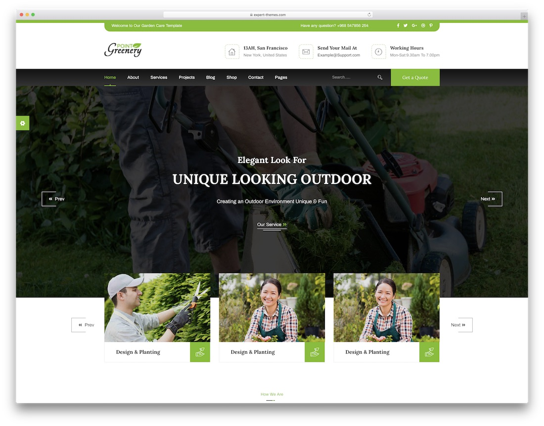 greenery point cheap website template