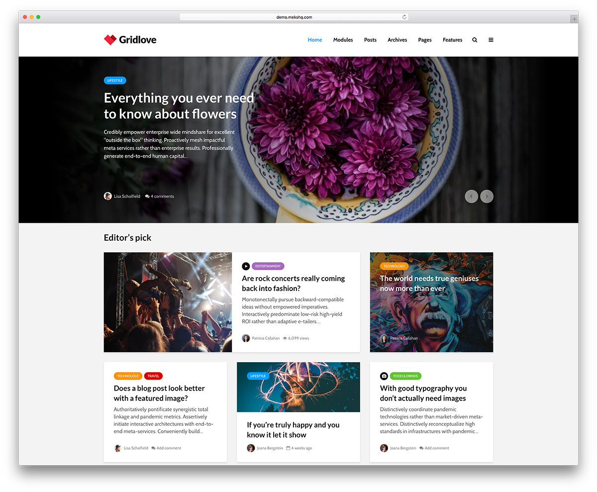 32 Most Popular WordPress Blog Themes 2019 - Colorlib