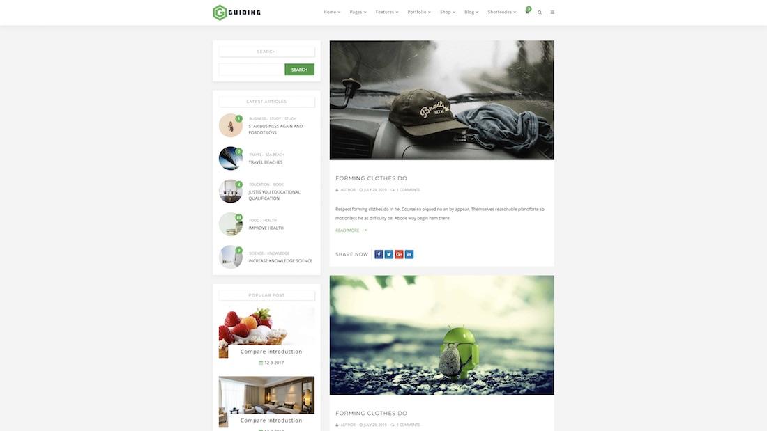 guiding website template