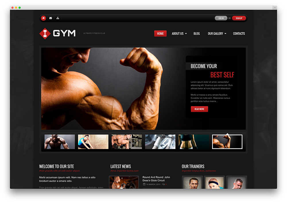 Ultimate Gym and fitness center theme