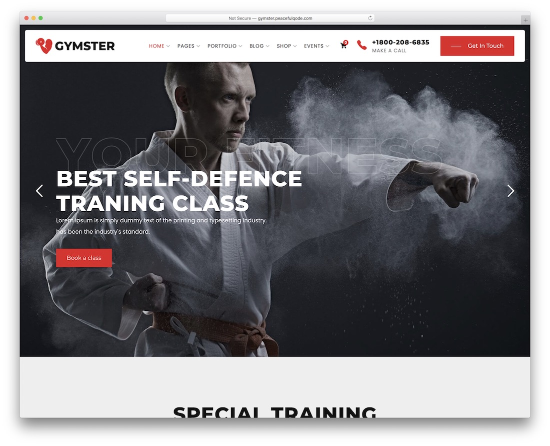gymster martial arts wordpress theme