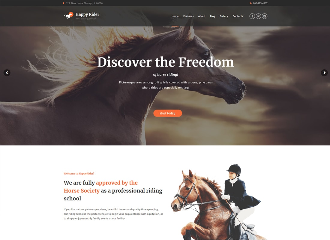 Happy Rider | Horse Riding School WordPress Theme
