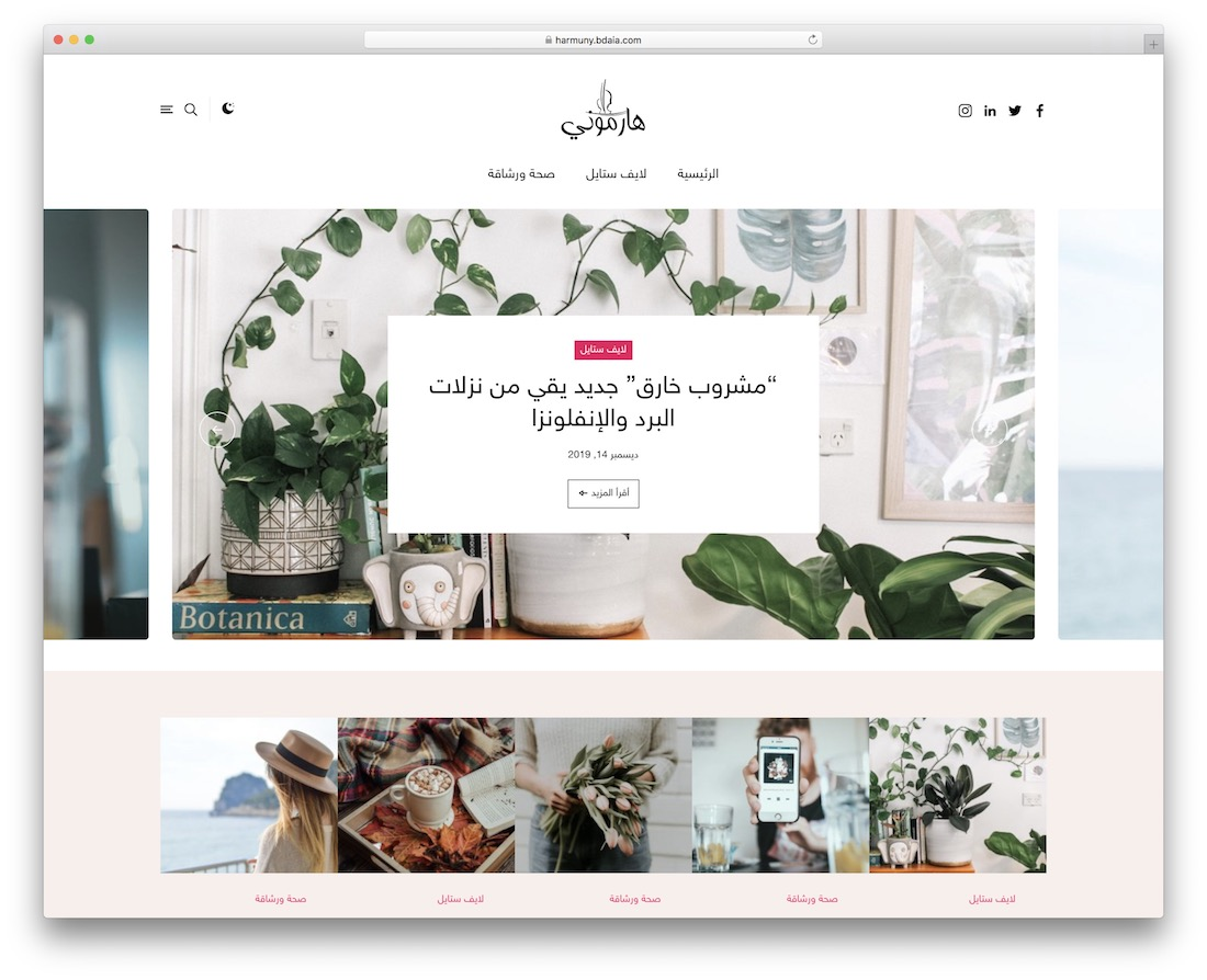 harmuny rtl wordpress theme