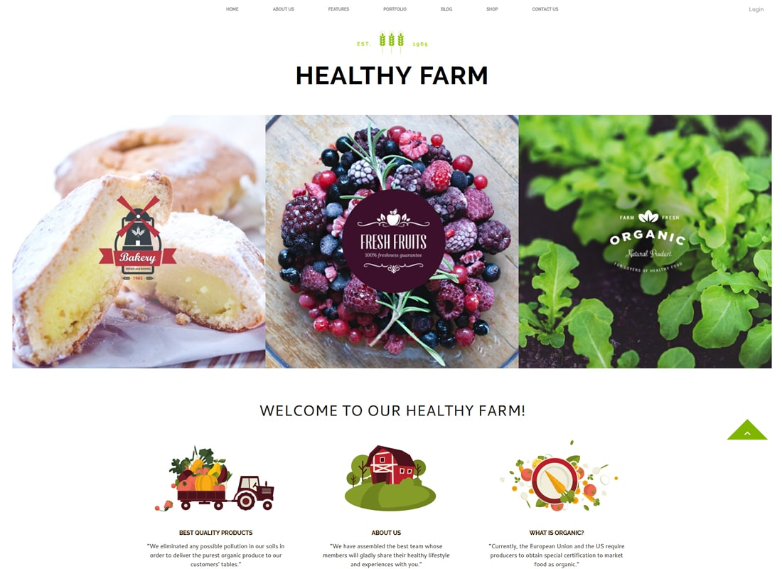 건강한 농장 | 음식과 농업 WordPress Theme