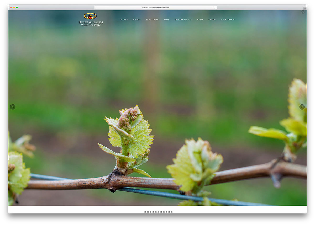 heartandhandswine-wine-company-site-with-visual-composer