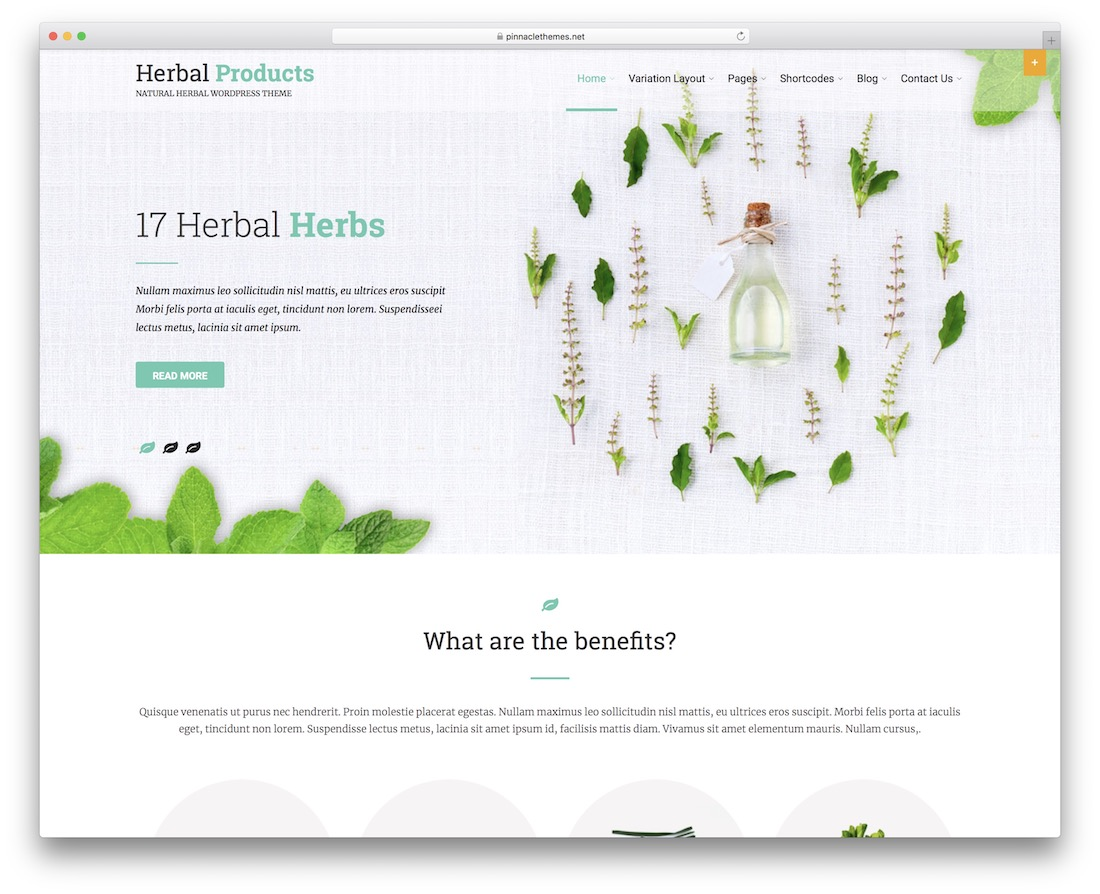 herbal lite free wordpress theme