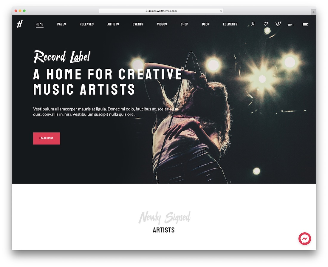 herion wordpress theme for musicians