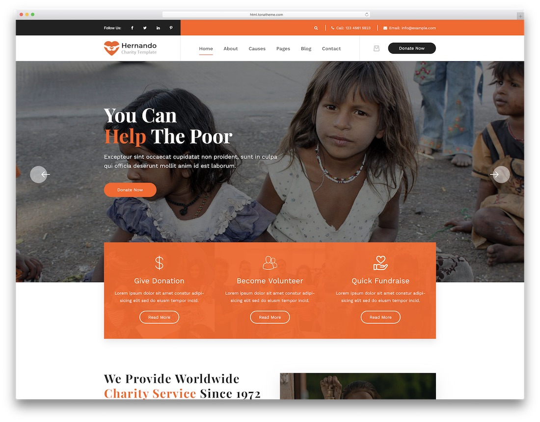 hernando ngo website template