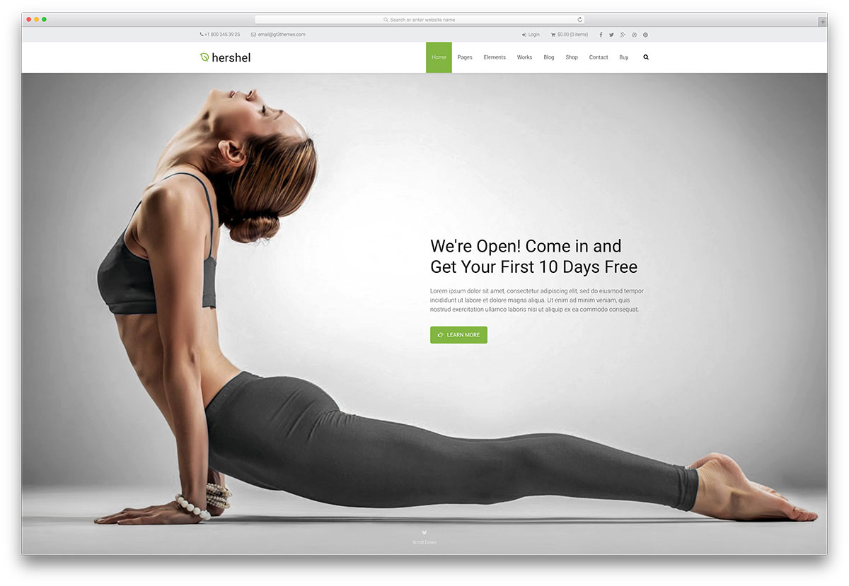 hershel-fullscreen-multipurpose-yoga-template
