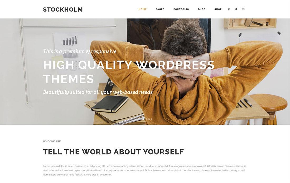 Top 20 High Quality Wordpress Themes 2015