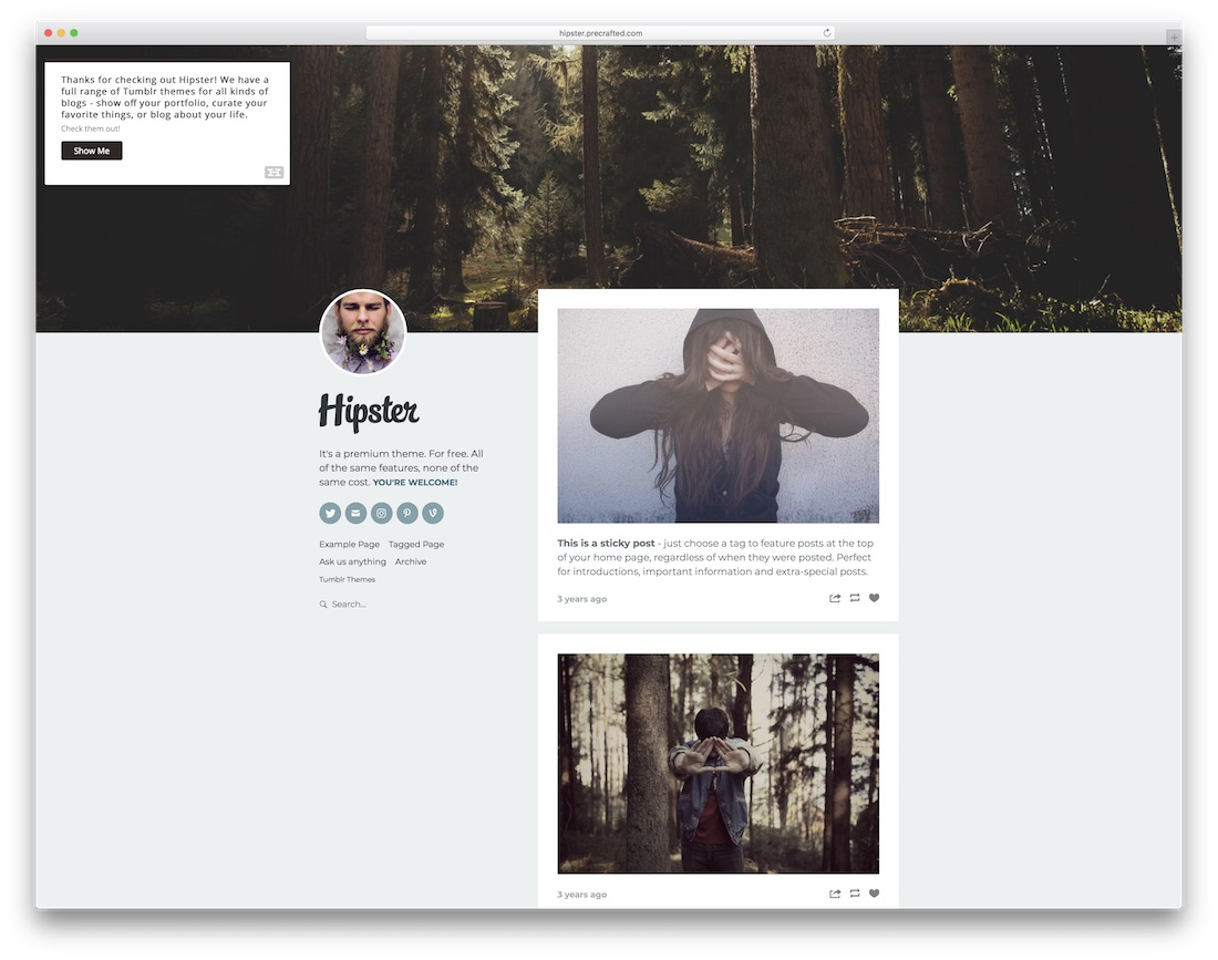 charming Tumblr Hipster Themes Part - 9: hipster free tumblr theme