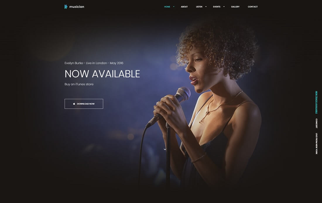 html musician website template