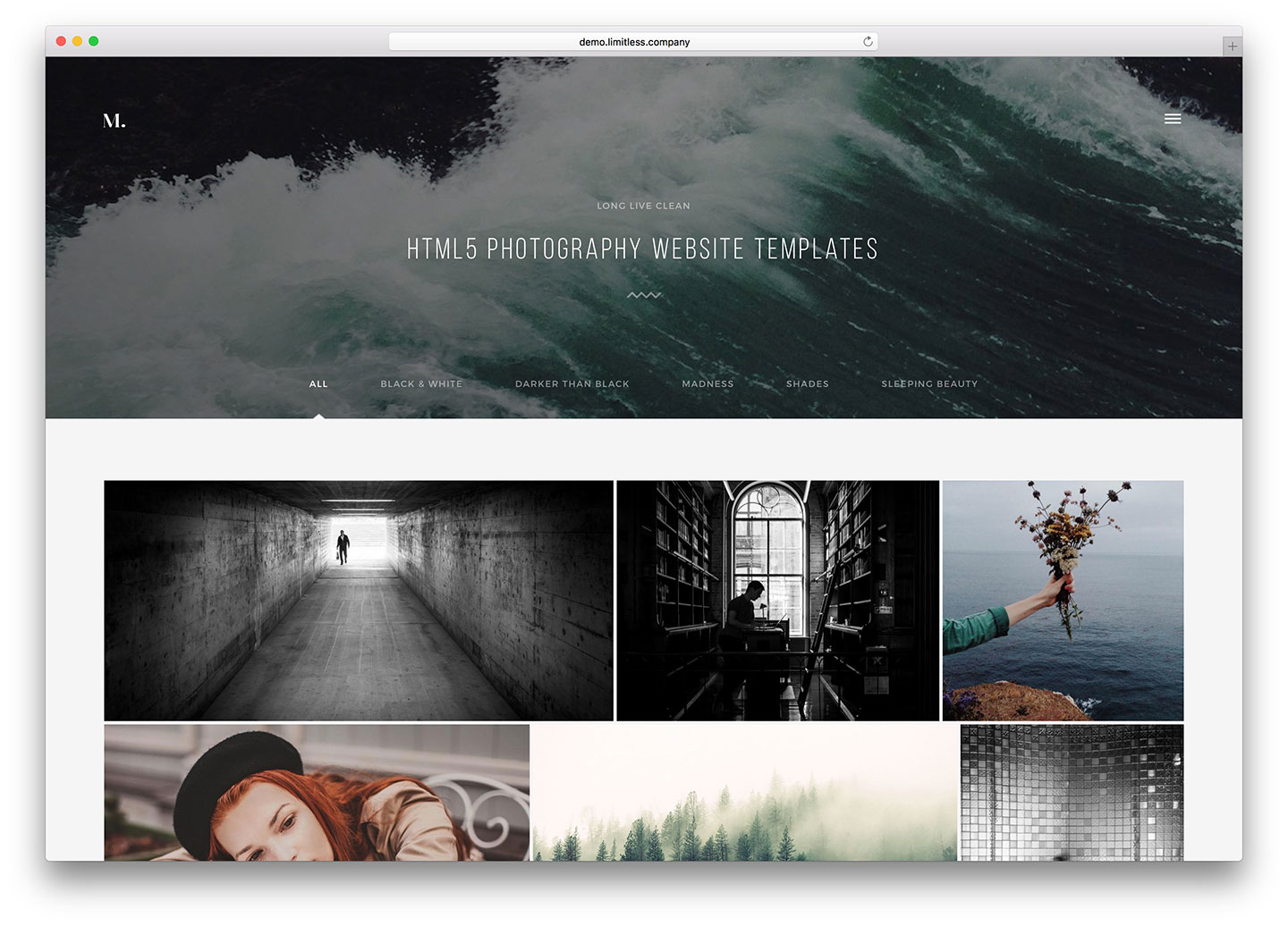 Top 22 html5 photography website templates 2018 colorlib for Top websites for artists