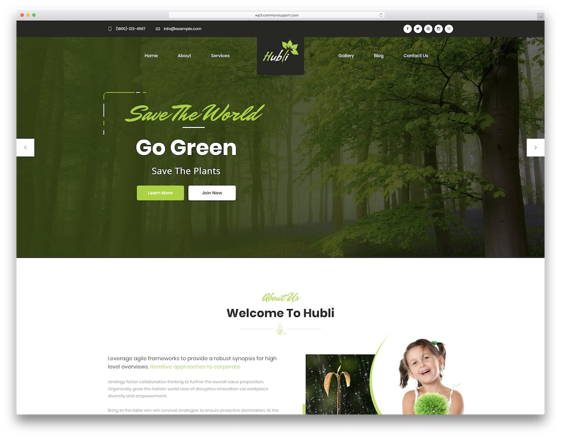 hubli nature wordpress theme
