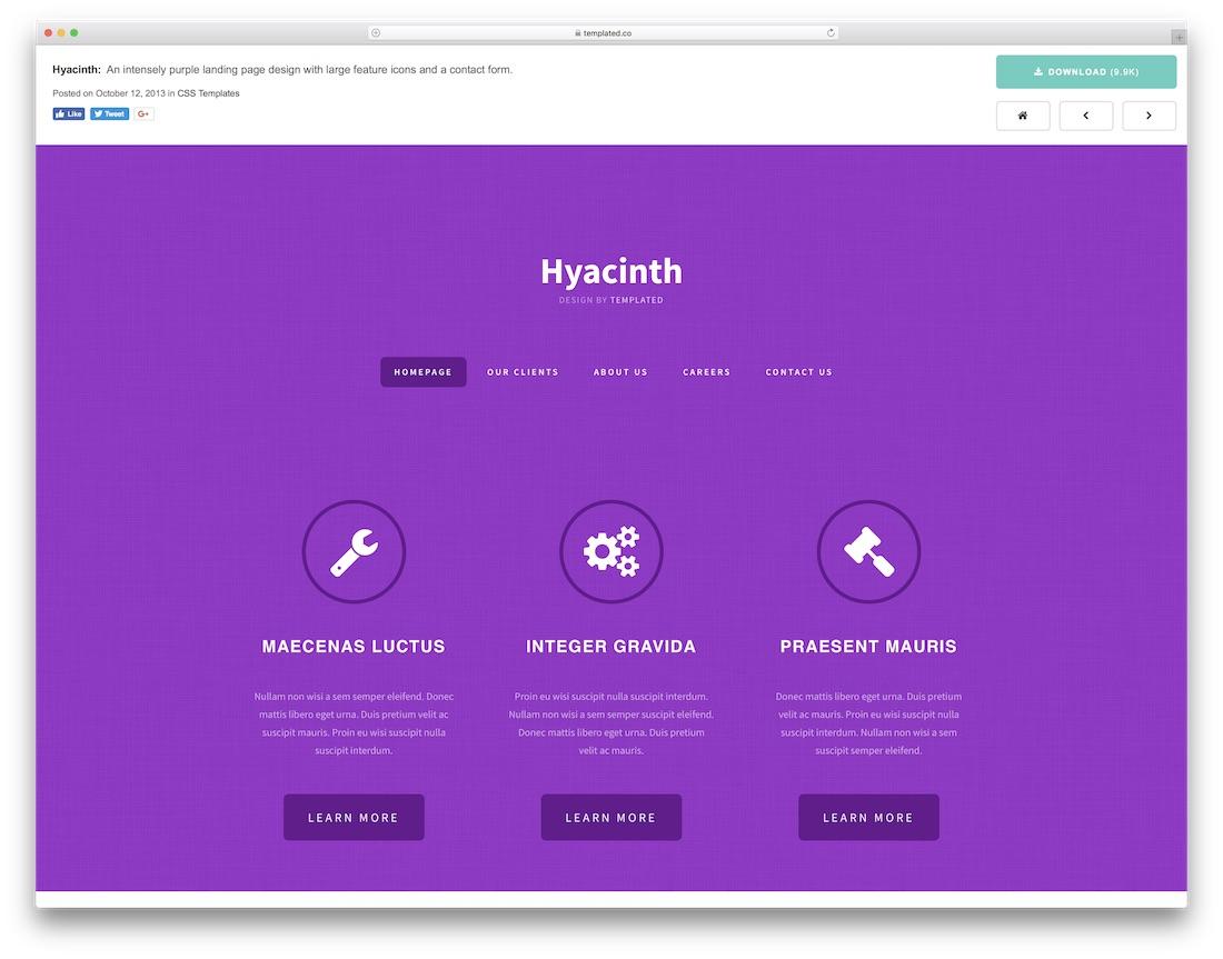 hyacinth website template